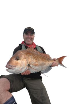 Big snapper will eat soft-plastics in very shallow water.