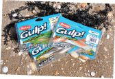 Gulp! soft baits are scented and biodegradable.