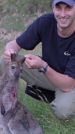 Thai Wallaby Meat Balls Recipe Spotx