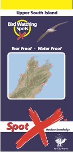Bird Watching Upper South Island